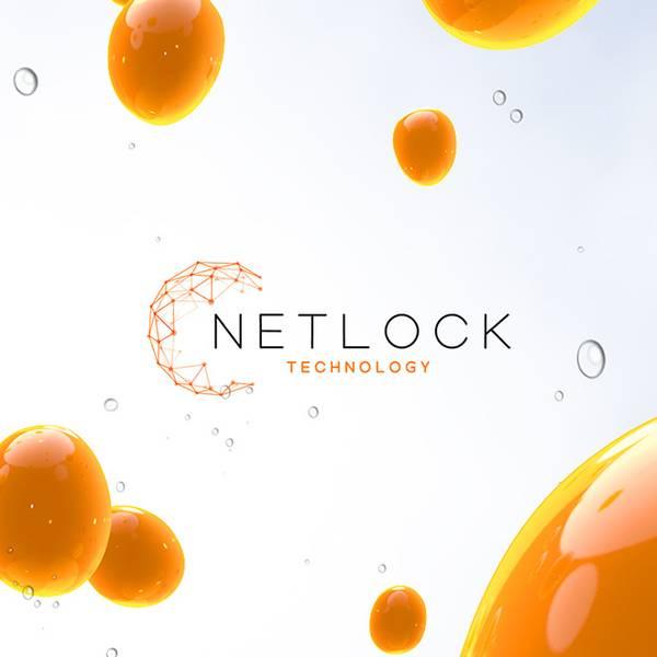 Netlock Image